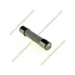 Fusible céramique temporisé 5X20 10 Ampères 5mm, micro ondes toutes marques