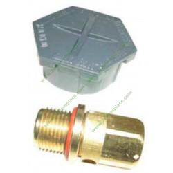 3PTG0711 Bouchon pour centrale vapeur astoria