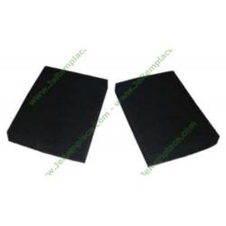 Filtres charbon (x2)