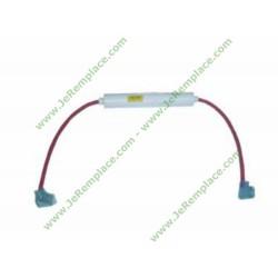 Fusible H.T 0.8A 5KV DE9170061A pour micro ondes