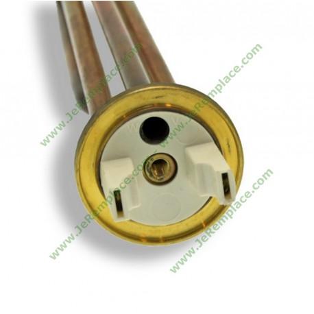 3000 Watts Résistance thermoplongée Longueur 450 mm pour chauffe eau