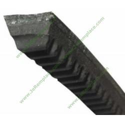 481935818035 Courroie trapézoïdale 3L493 3L492 pour lave linge