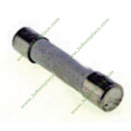 5x20 mm 12,5 Ampères Fusible pour four à micro-ondes